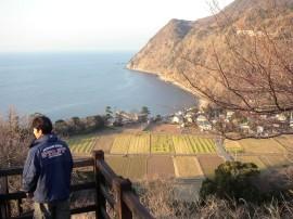 伊豆・井田の展望台から井田港を見る